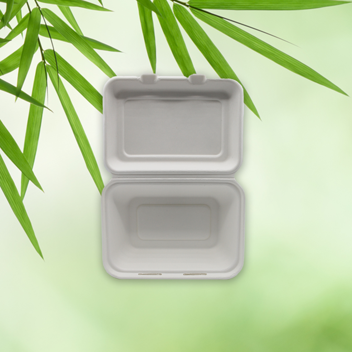 Be Tasty Menübox ungeteilt 600 ml aus Zuckerrohr 187x131x59mm  50 Stück