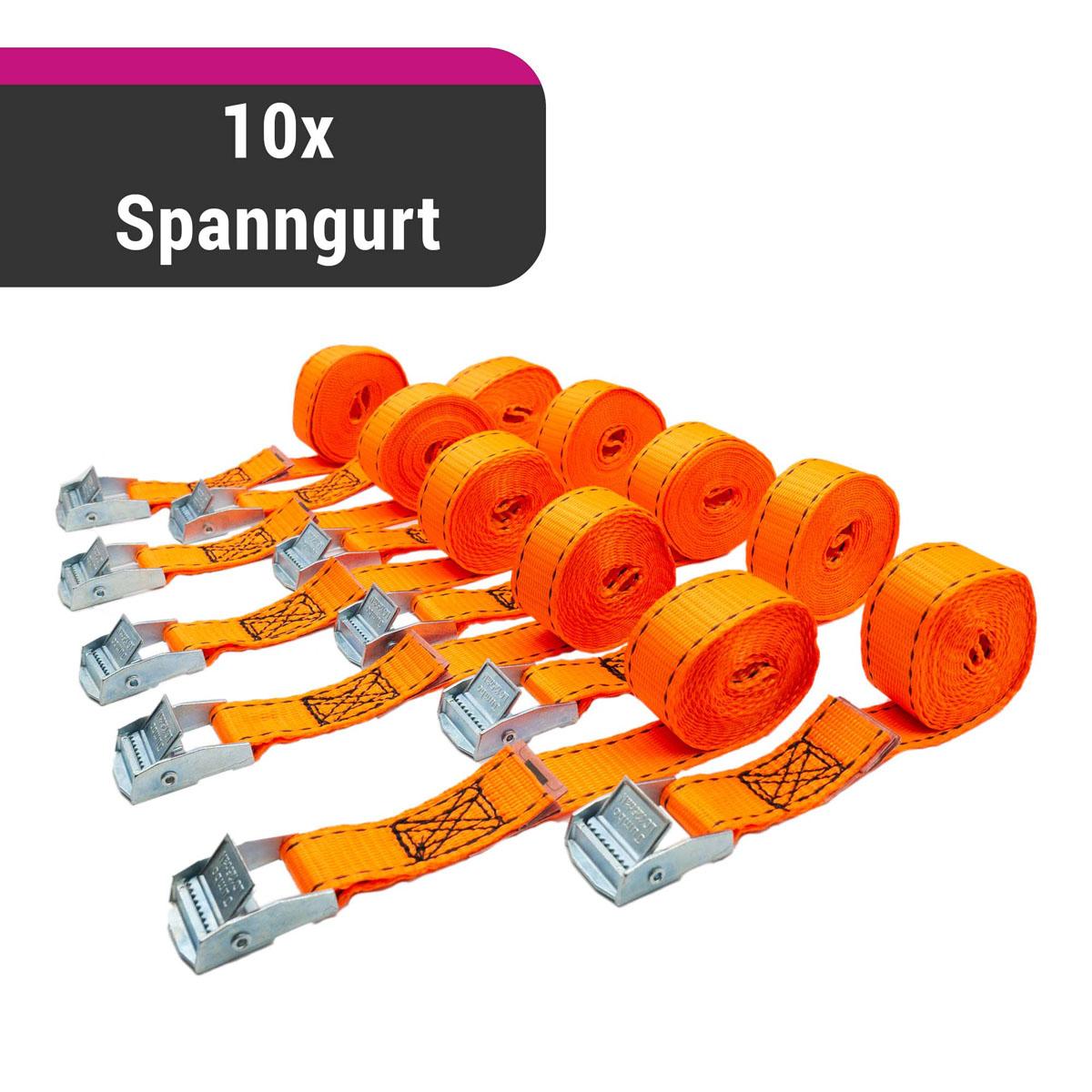 D&W 10x Spanngurt 25mm x 2,5m 125 daN